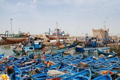 ad Esaouira c'è un portcciolo pieno di barche blu di pescatori